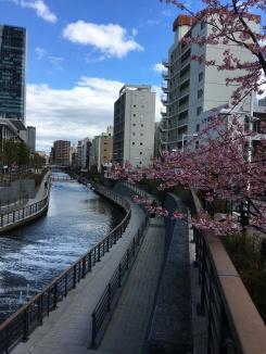 Across a little bridge
