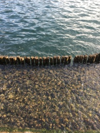 Crystal clear water of Lake Ashi